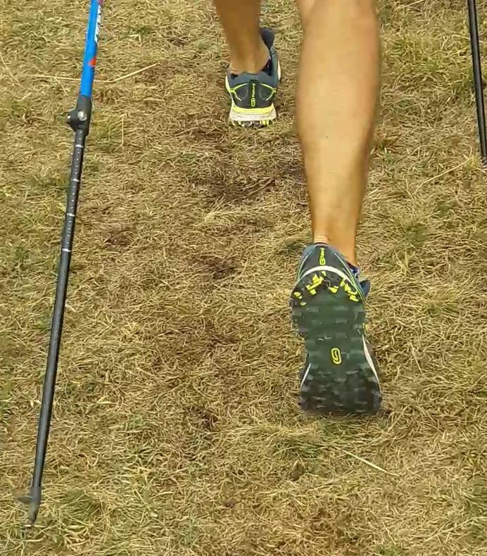 Chaussures de trails adaptées à la marche nordique