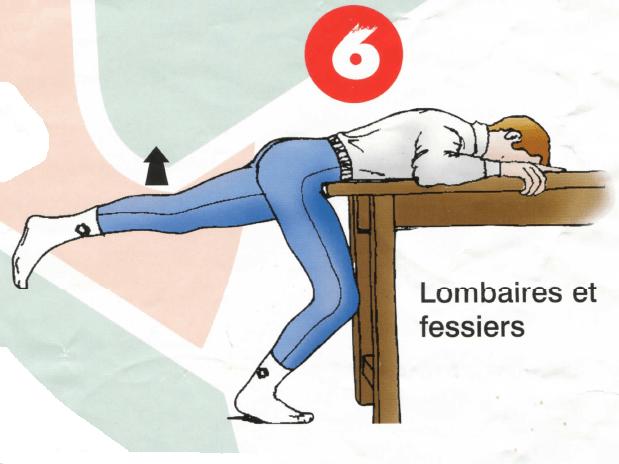 Dorso-lombaires - Exercice 6